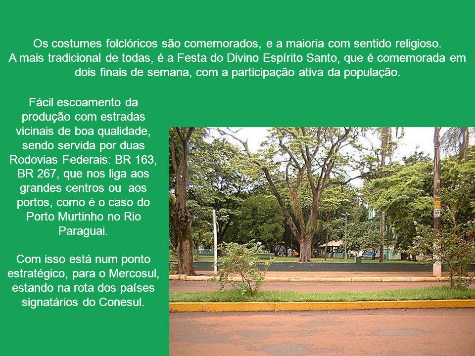 A pastagem plantada corresponde a mais de 80% da cobertura vegetal do município. O restante é formado pela Savana (cerrado), floresta Estacional, várz
