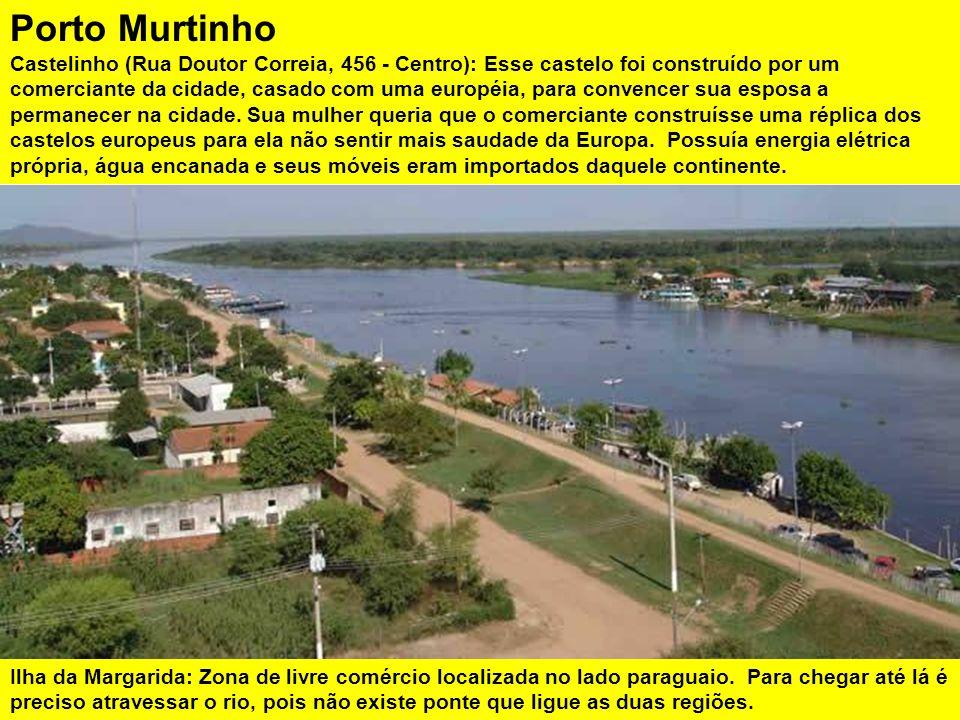 O turismo de pesca é a sua principal atividade econômica. O trecho do Rio Paraguai em Porto Murtinho é um dos mais piscosos do Brasil, sendo por isso