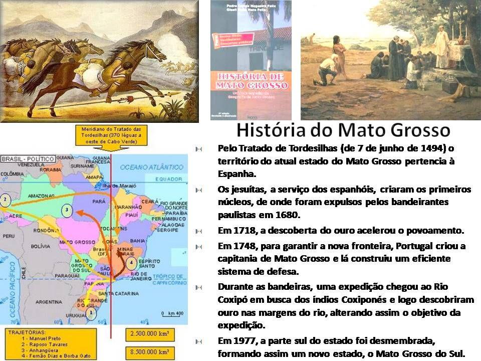 O Mato Grosso tem uma população de 2.803.274 hab. segundo o IBGE de 2005, com uma densidade demográfica de 2,6 hab/km². Mato Grosso é o décimo - nono