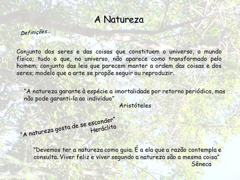 Os gregos, na Antigüidade, pensavam que a natureza representava algo como o meio necessário em que os homens tem de aprender a viver.