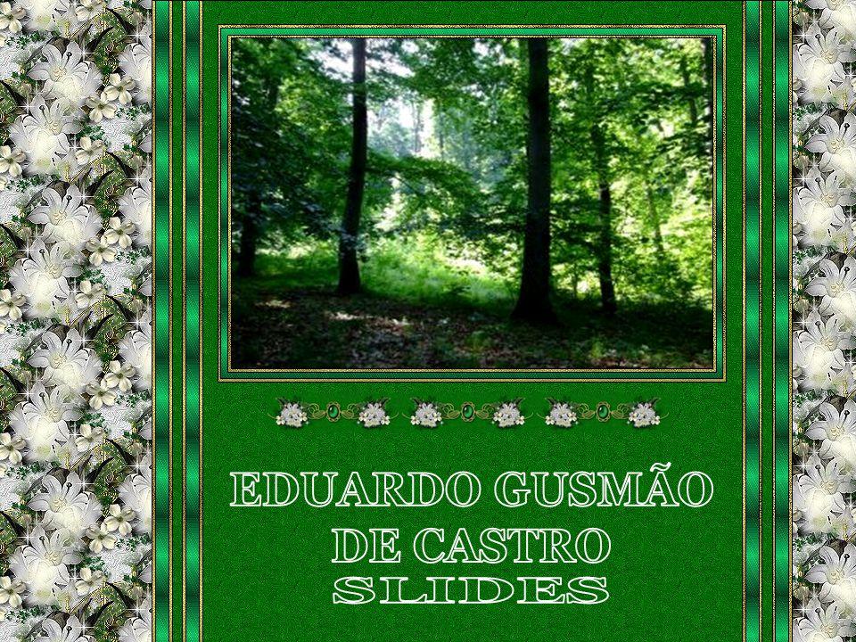 Rio Verde-GO., 12.09.2009 eduardogusmaodecastro@gmail.com Música: Morir de Amor - Orquestra: Frank Pourcel