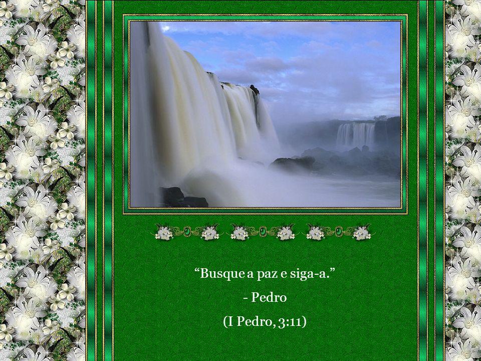Trechos do livro Fonte Viva – p. 209 Pelo Espírito: EMMANUEL Médium: Francisco Cândido Xavier