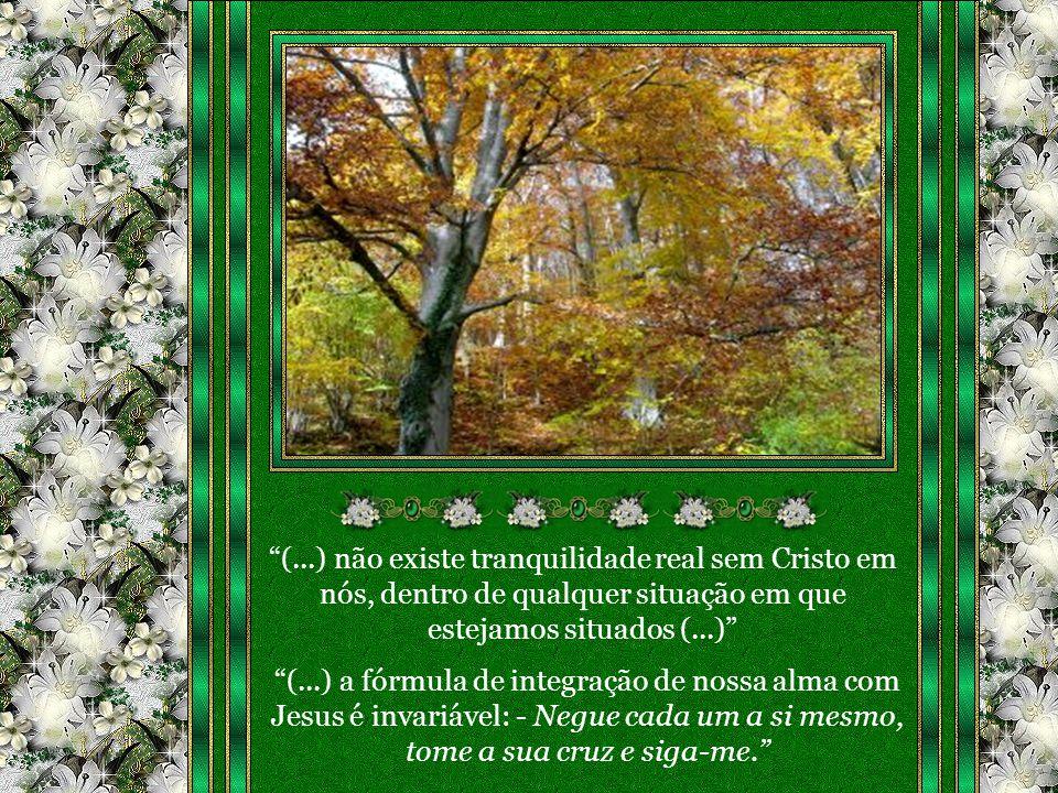 (...) a fórmula de integração de nossa alma com Jesus é invariável: - Negue cada um a si mesmo, tome a sua cruz e siga-me.