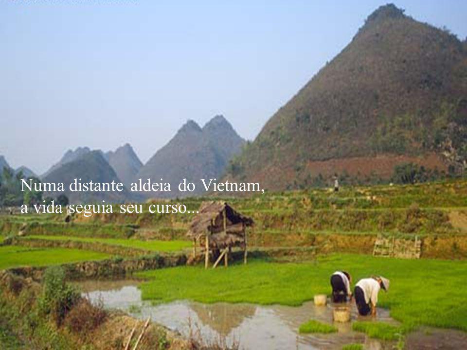 Numa distante aldeia do Vietnam, a vida seguia seu curso...