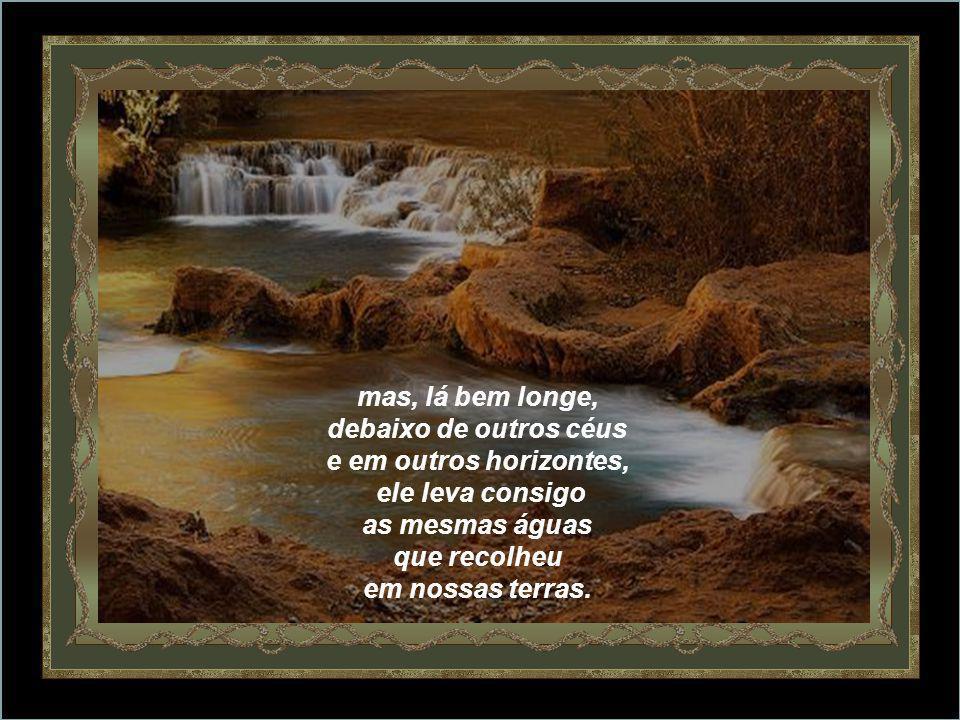 A continuidade da vida nunca se rompe: o rio corre e avança sempre até perder-se de nossa vista,