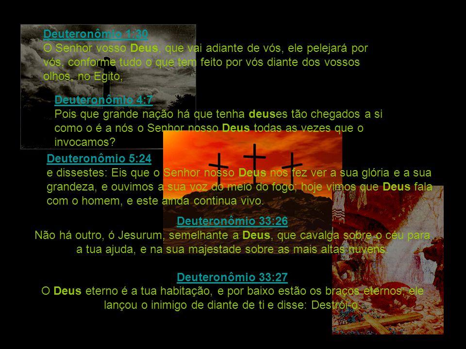 Deuteronômio 1:30 Deuteronômio 1:30 O Senhor vosso Deus, que vai adiante de vós, ele pelejará por vós, conforme tudo o que tem feito por vós diante do