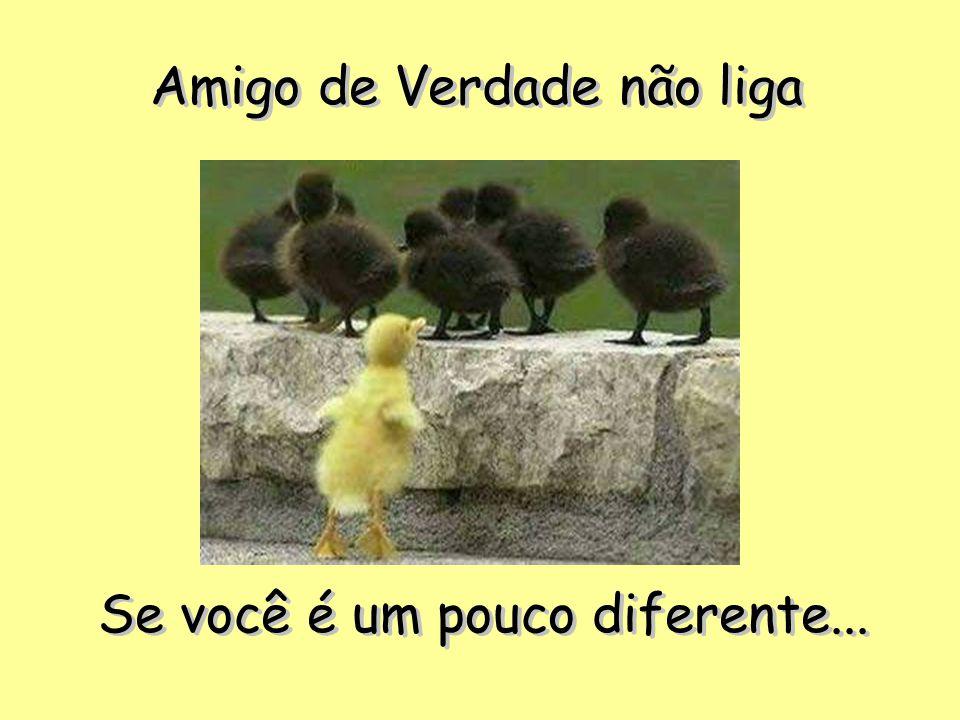 Amigo de Verdade não liga Se você é um pouco diferente... Se você é um pouco diferente...