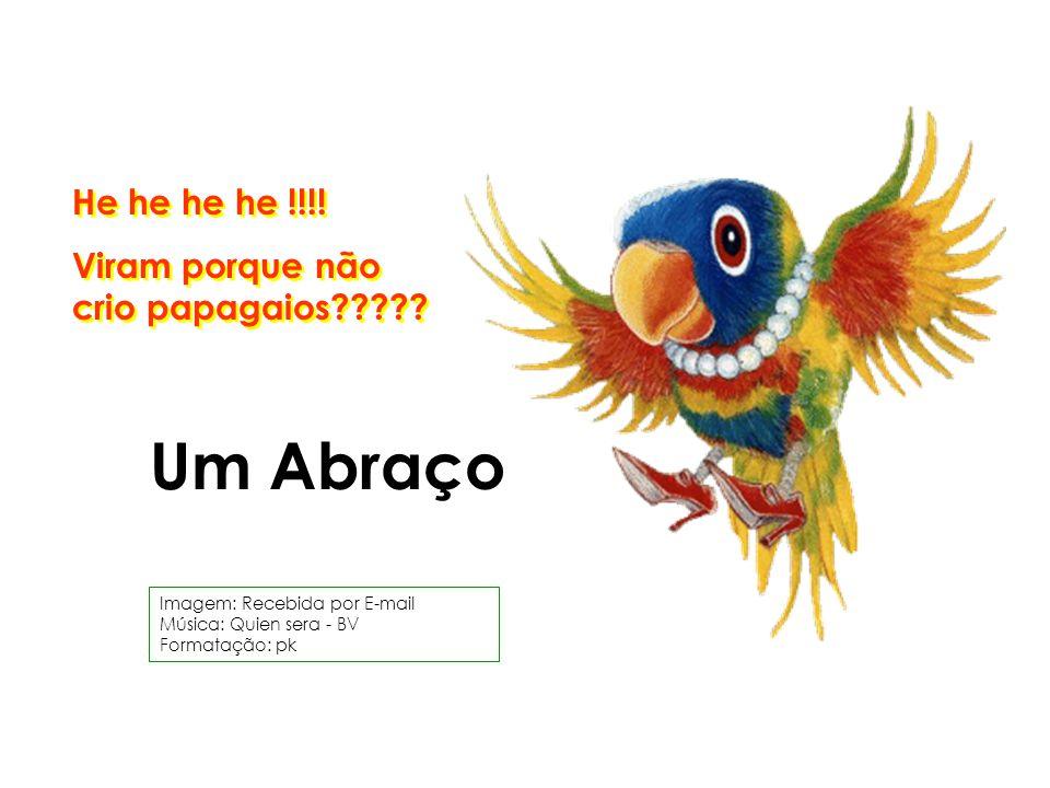 He he he he !!!.Viram porque não crio papagaios????.