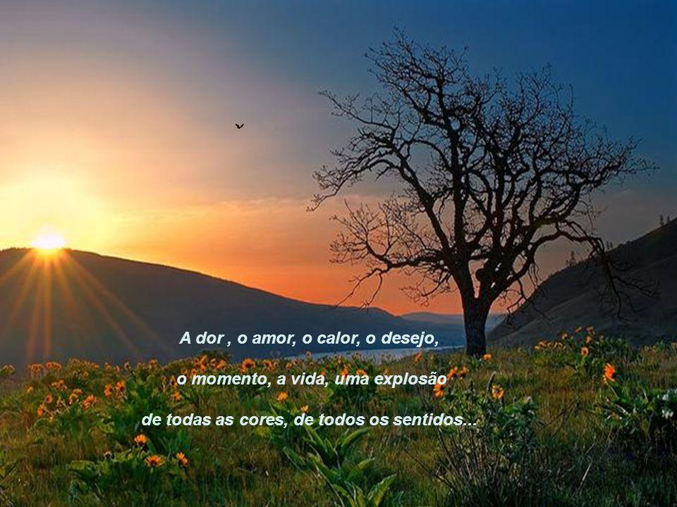 A dor, o amor, o calor, o desejo, o momento, a vida, uma explosão de todas as cores, de todos os sentidos...