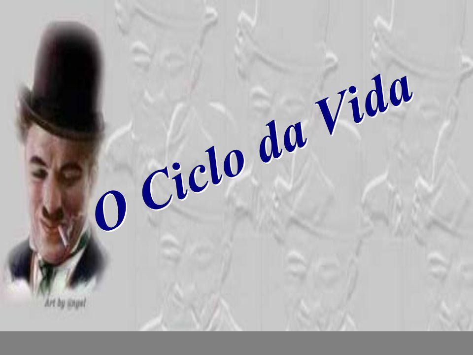 nilsonhussar@yahoo.com.br O Ciclo da Vida O Ciclo da Vida