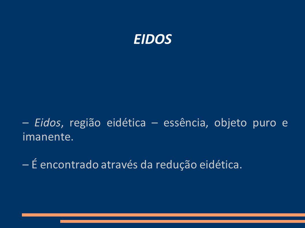 EIDOS – Eidos, região eidética – essência, objeto puro e imanente.