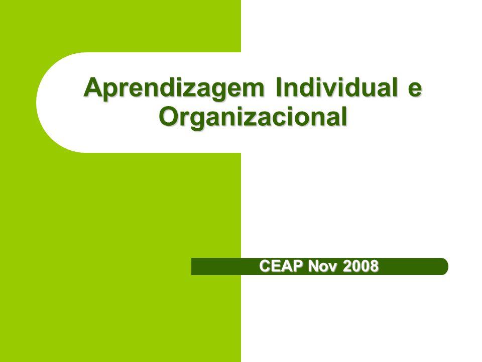 Aprendizagem Individual e Organizacional CEAP Nov 2008