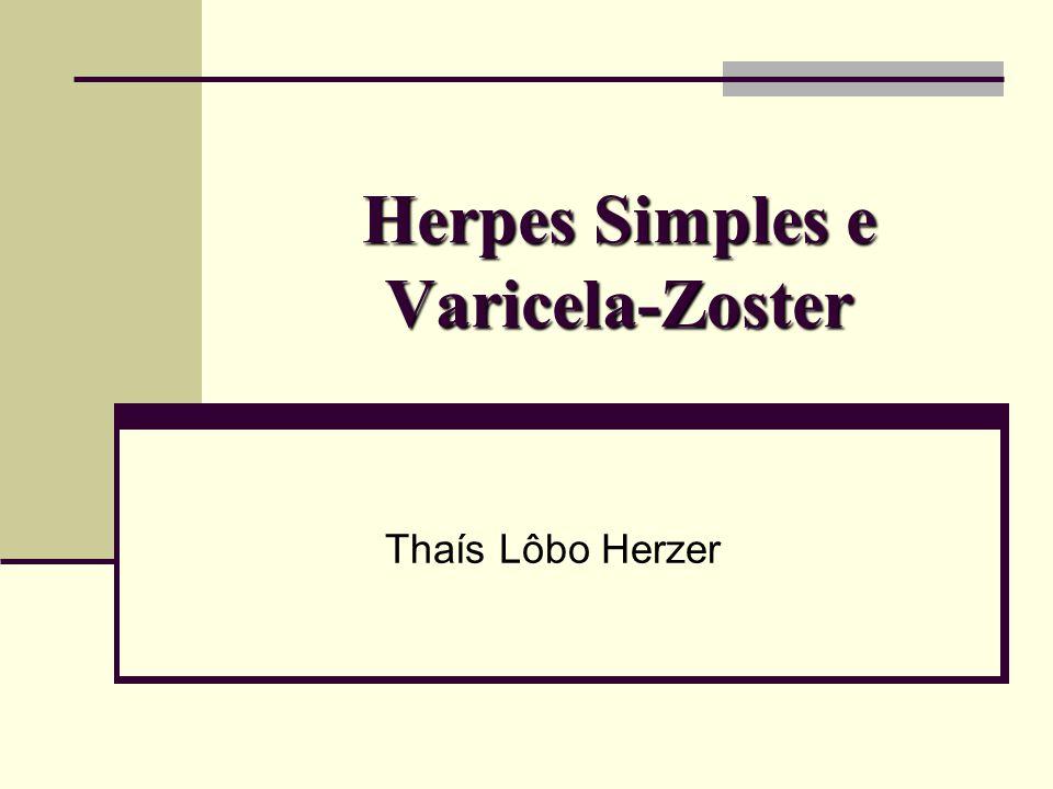 Família Herpesviridae Envelope Lipídico (Glicoproteínas) Tegumento: material amorfo que protege o capsídeo Dupla fita de DNA Subfamílias α: HSV 1, HSV 2, VZV ß: CMV, HHV 6, HHV 7 γ: EBV, HHV 8