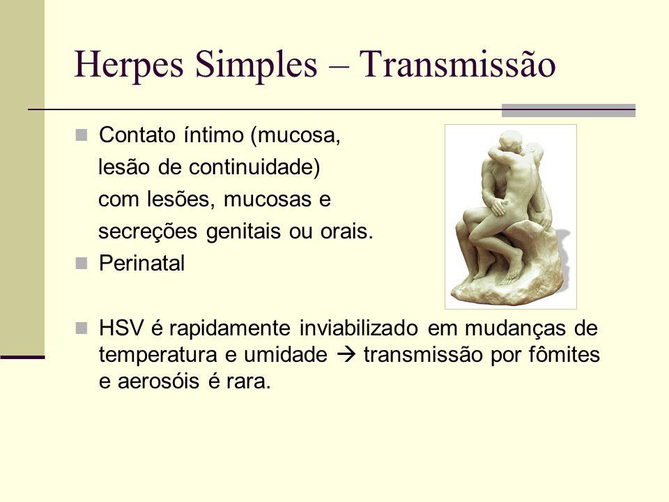 Herpes Simples – Transmissão Contato íntimo (mucosa, lesão de continuidade) com lesões, mucosas e secreções genitais ou orais. Perinatal HSV é rapidam