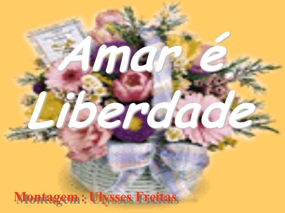 Amar é Liberdade Montagem : Ulysses Freitas