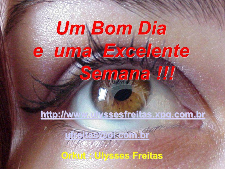 Um Bom Dia e uma Excelente Semana !!! ufreitas@oi.com.br ufreitas@oi.com.brufreitas@oi.com.br http://www.ulyssesfreitas.xpg.com.br Orkut : Ulysses Fre