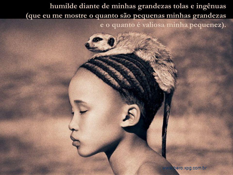 Sábio dentro de meus limites pequenos e inexatos, www.bero.xpg.com.br