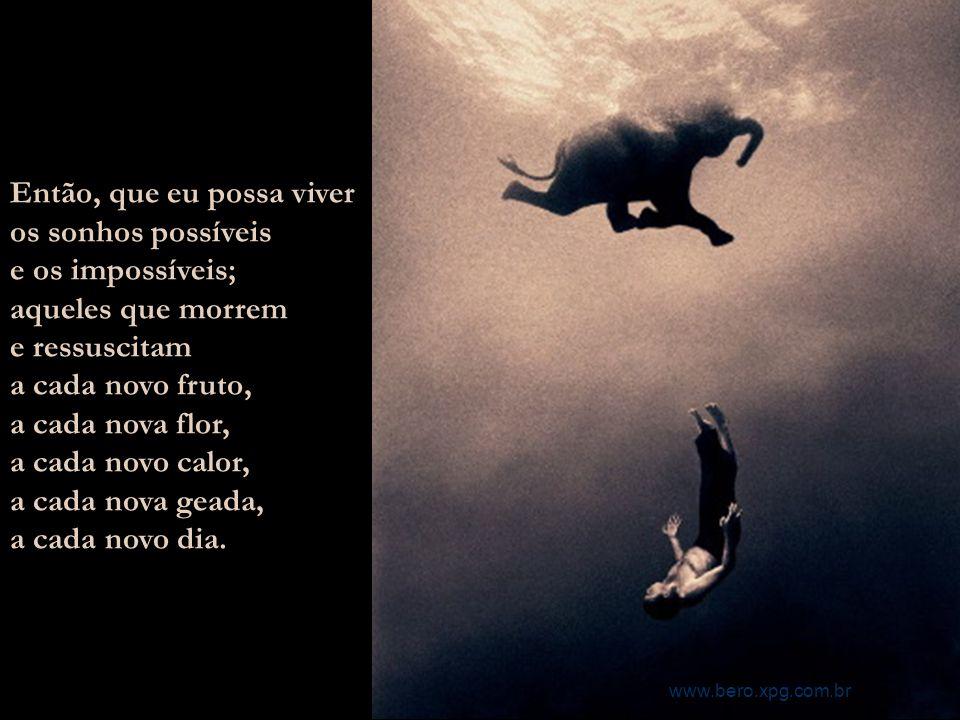 Saber realizar os sonhos que nascem em mim e por mim e comigo morrem por eu não os saber sonhos. www.bero.xpg.com.br