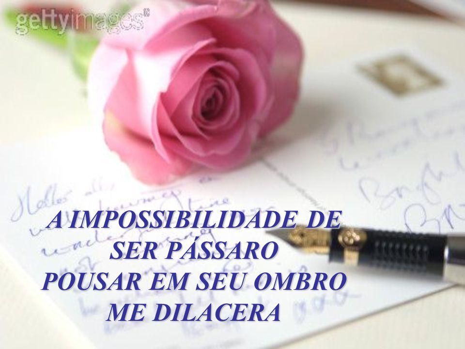 A Impossibilidade...