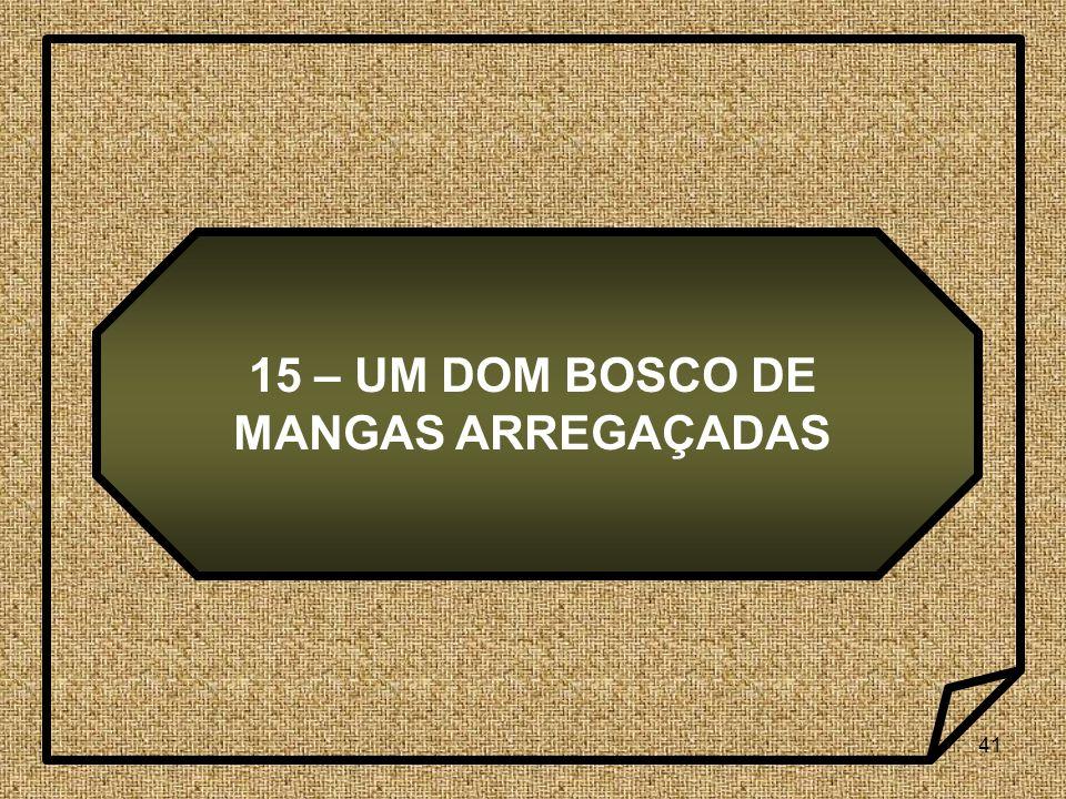 41 15 – UM DOM BOSCO DE MANGAS ARREGAÇADAS