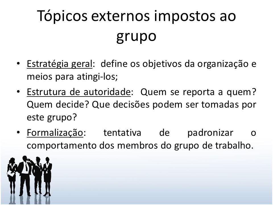 Tópicos externos impostos ao grupo Estratégia geral: define os objetivos da organização e meios para atingi-los; Estrutura de autoridade: Quem se reporta a quem.