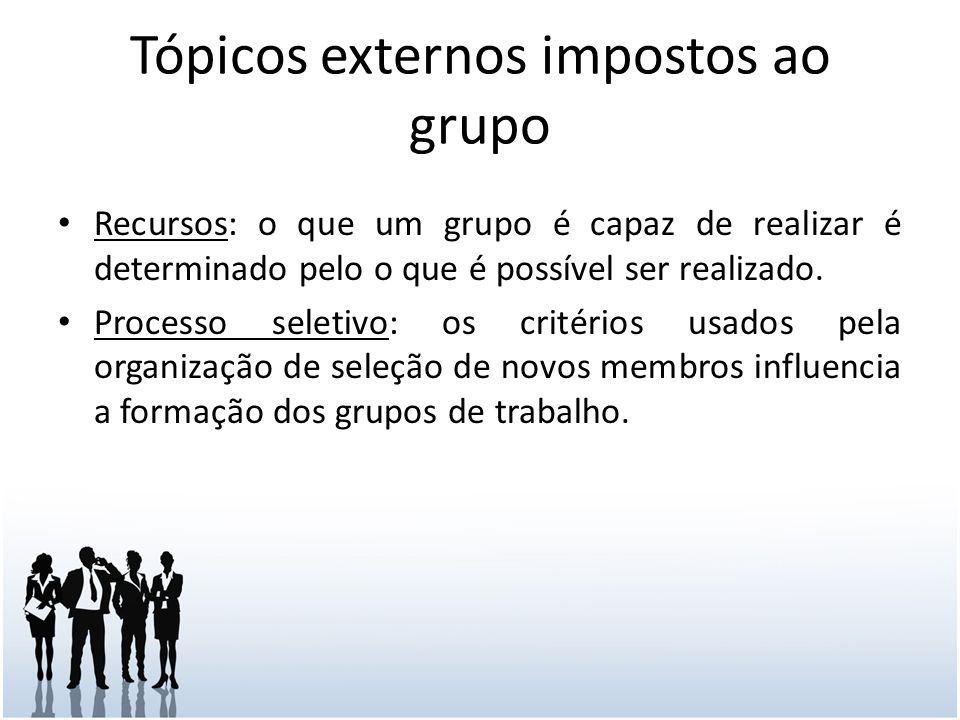 Tópicos externos impostos ao grupo Recursos: o que um grupo é capaz de realizar é determinado pelo o que é possível ser realizado.