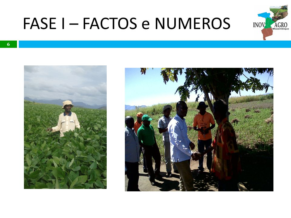 Phase II (Jan 2014 – Dec 2017): Replication Deepening and widening impact Improve number and type of services to small farmers and increase profitability Scaling up: extend reach of project, geographically and numerically Crowding in more private sector partners through effective communication of phase I results and improved offer development Stimulating copy cat practices through farmer focused communication: impact for farmers under out-grower programs Using results to influence GoM policy and practices at regional and national levels