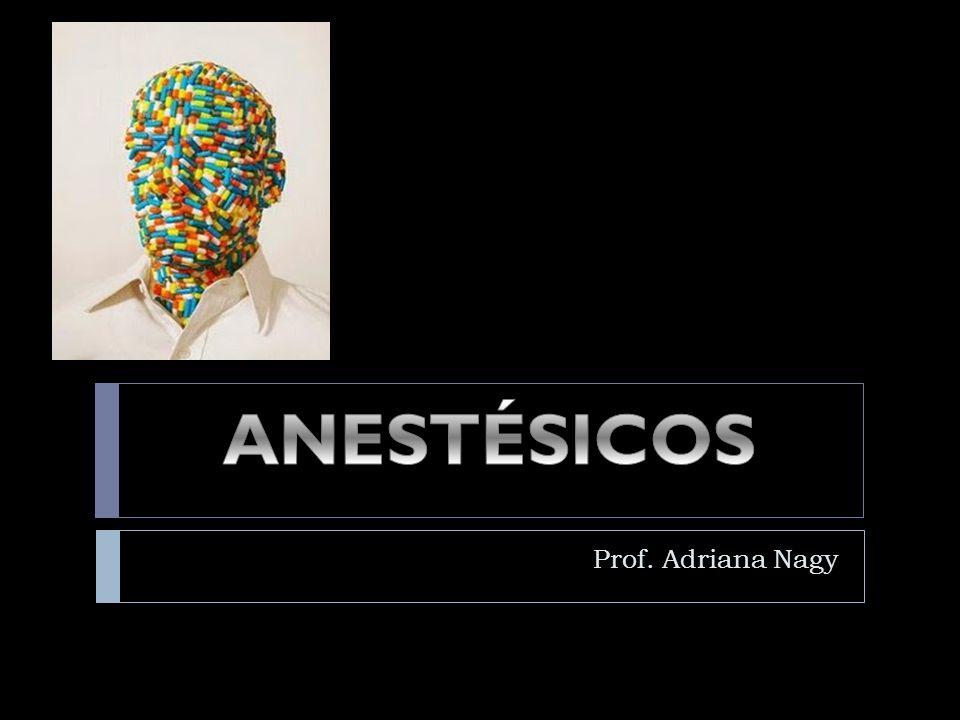Prof. Adriana Nagy
