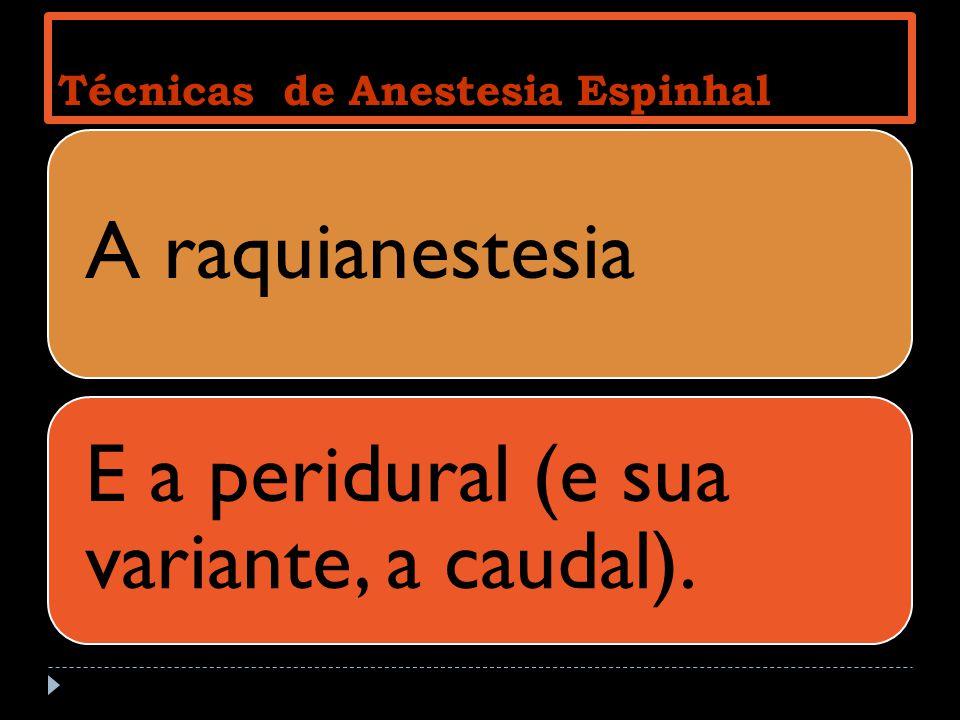 Técnicas de Anestesia Espinhal A raquianestesia E a peridural (e sua variante, a caudal).
