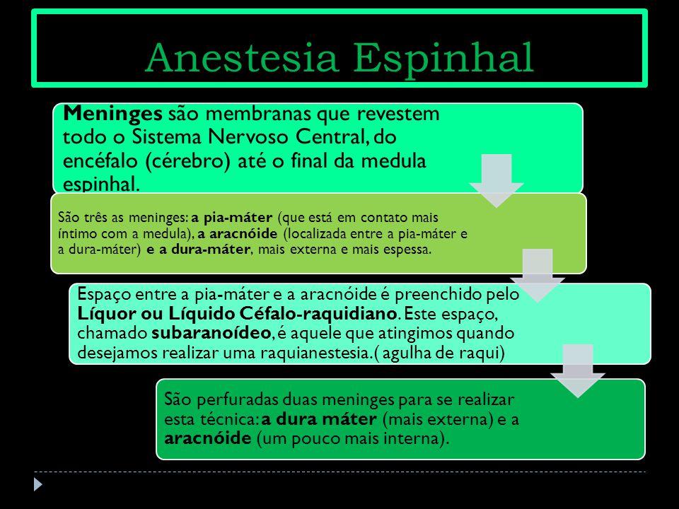 Anestesia Espinhal Meninges são membranas que revestem todo o Sistema Nervoso Central, do encéfalo (cérebro) até o final da medula espinhal. São três