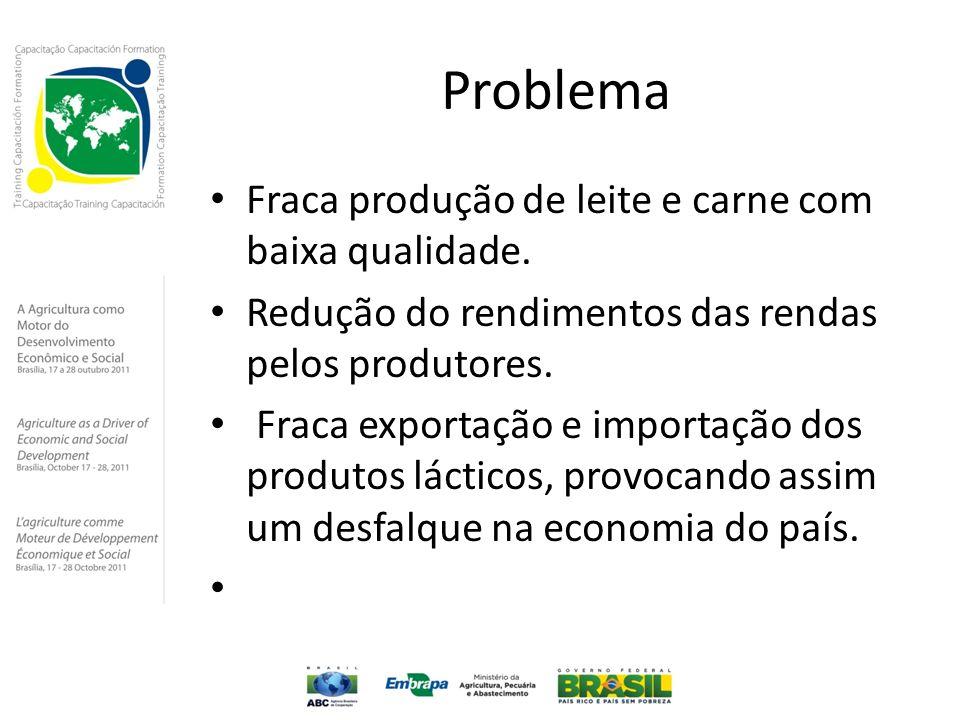 Problema Fraca produção de leite e carne com baixa qualidade. Redução do rendimentos das rendas pelos produtores. Fraca exportação e importação dos pr