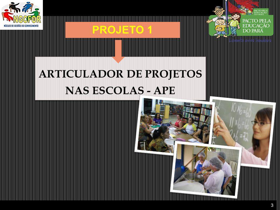 3 ARTICULADOR DE PROJETOS NAS ESCOLAS - APE ARTICULADOR DE PROJETOS NAS ESCOLAS - APE PROJETO 1