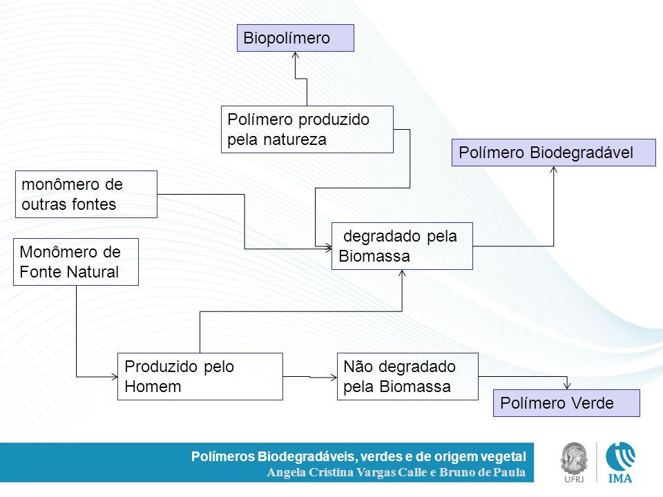 Polímeros Biodegradáveis, verdes e de origem vegetal Angela Cristina Vargas Calle e Bruno de Paula Produzido pelo Homem Monômero de Fonte Natural degr