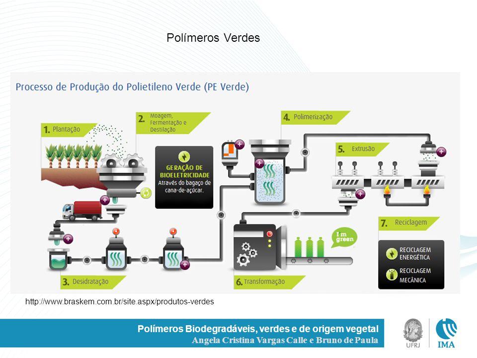 / Polímeros Biodegradáveis, verdes e de origem vegetal Angela Cristina Vargas Calle e Bruno de Paula http://www.braskem.com.br/site.aspx/produtos-verd
