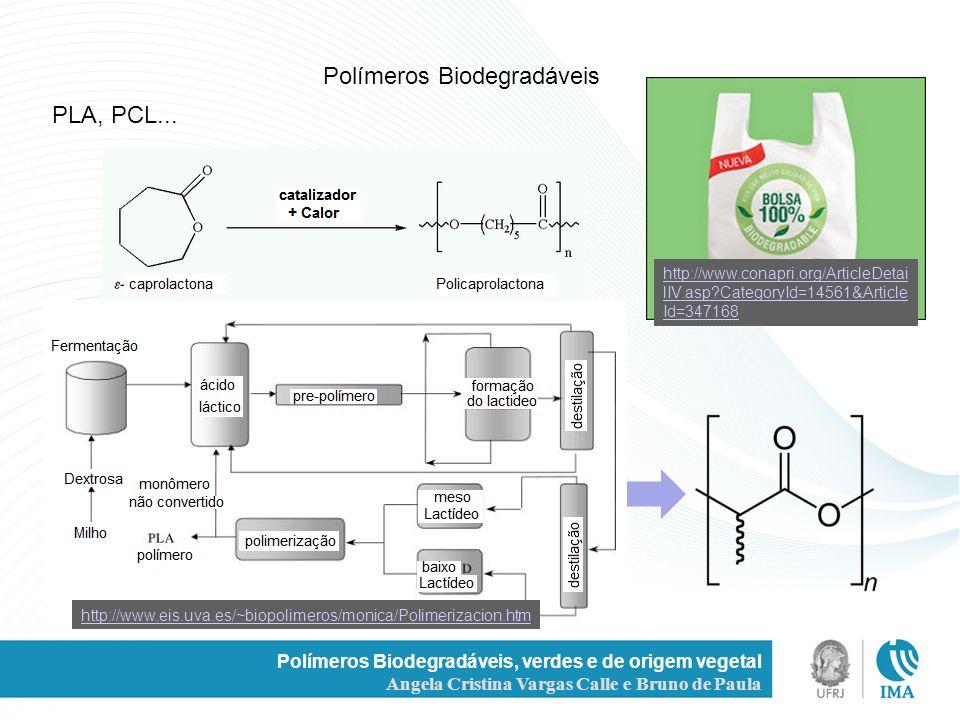 Polímeros Biodegradáveis, verdes e de origem vegetal Angela Cristina Vargas Calle e Bruno de Paula Polímeros Biodegradáveis PLA, PCL... http://www.eis