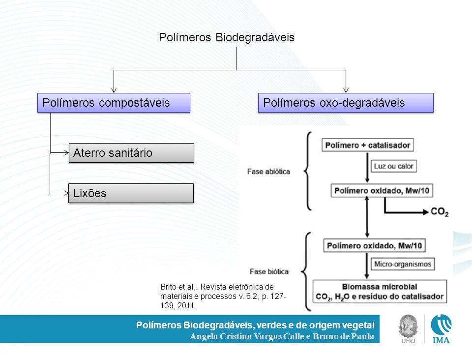 Polímeros Biodegradáveis, verdes e de origem vegetal Angela Cristina Vargas Calle e Bruno de Paula Polímeros Biodegradáveis Polímeros compostáveis Pol