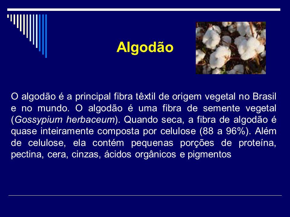 Algodão O algodão é a principal fibra têxtil de origem vegetal no Brasil e no mundo. O algodão é uma fibra de semente vegetal (Gossypium herbaceum). Q