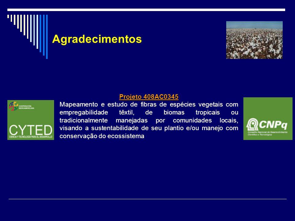 Projeto 408AC0345 Mapeamento e estudo de fibras de espécies vegetais com empregabilidade têxtil, de biomas tropicais ou tradicionalmente manejadas por