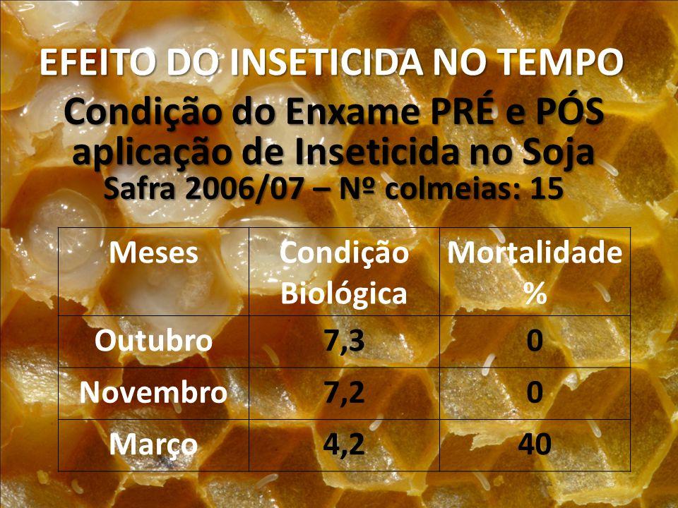 EFEITO DO INSETICIDA NO TEMPO Condição do Enxame PRÉ e PÓS aplicação de Inseticida no Soja Safra 2006/07 – Nº colmeias: 15 MesesCondição Biológica Mor