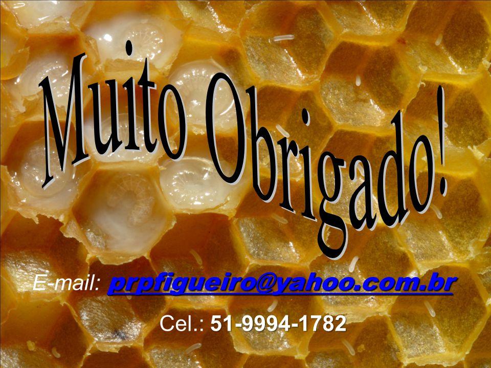 prpfigueiro@yahoo.com.br prpfigueiro@yahoo.com.br E-mail: prpfigueiro@yahoo.com.br prpfigueiro@yahoo.com.br 51-9994-1782 Cel.: 51-9994-1782