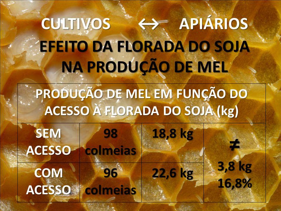 CULTIVOS APIÁRIOS EFEITO DA FLORADA DO SOJA NA PRODUÇÃO DE MEL PRODUÇÃO DE MEL EM FUNÇÃO DO ACESSO À FLORADA DO SOJA (kg) SEMACESSO98colmeias 18,8 kg