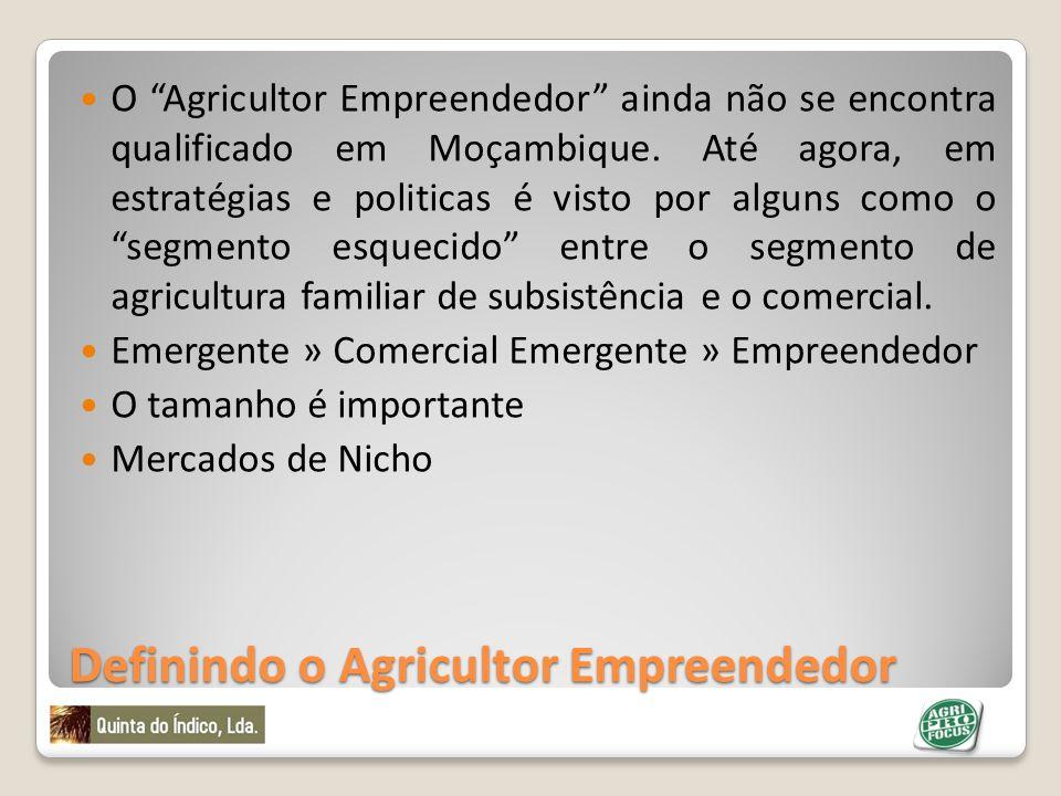 Definindo o Agricultor Empreendedor O Agricultor Empreendedor ainda não se encontra qualificado em Moçambique. Até agora, em estratégias e politicas é