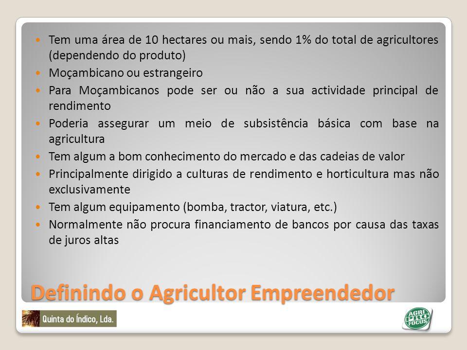 Definindo o Agricultor Empreendedor Tem uma área de 10 hectares ou mais, sendo 1% do total de agricultores (dependendo do produto) Moçambicano ou estr