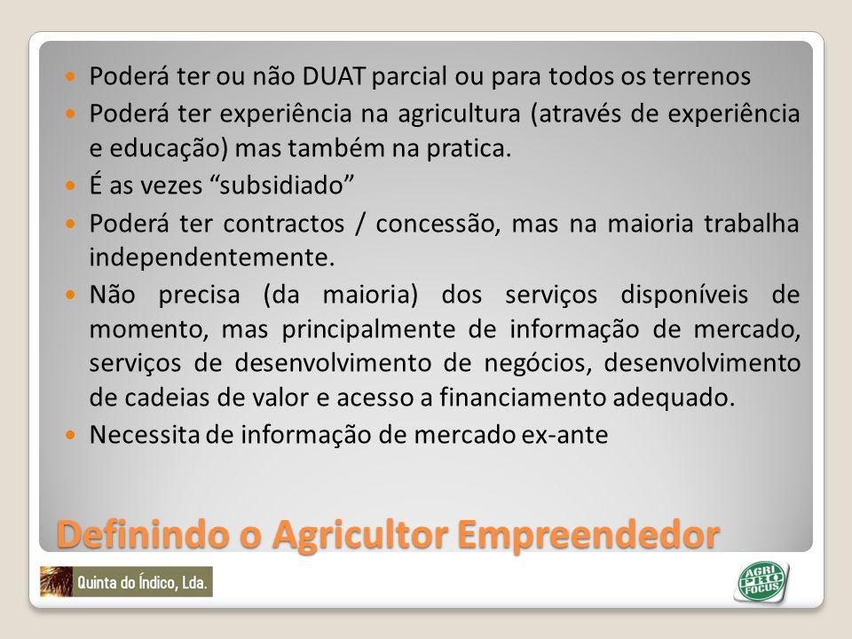 Definindo o Agricultor Empreendedor Poderá ter ou não DUAT parcial ou para todos os terrenos Poderá ter experiência na agricultura (através de experiê