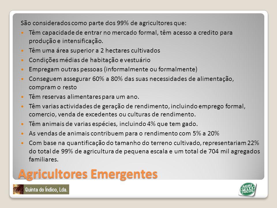 Agricultores Emergentes São considerados como parte dos 99% de agricultores que: Têm capacidade de entrar no mercado formal, têm acesso a credito para