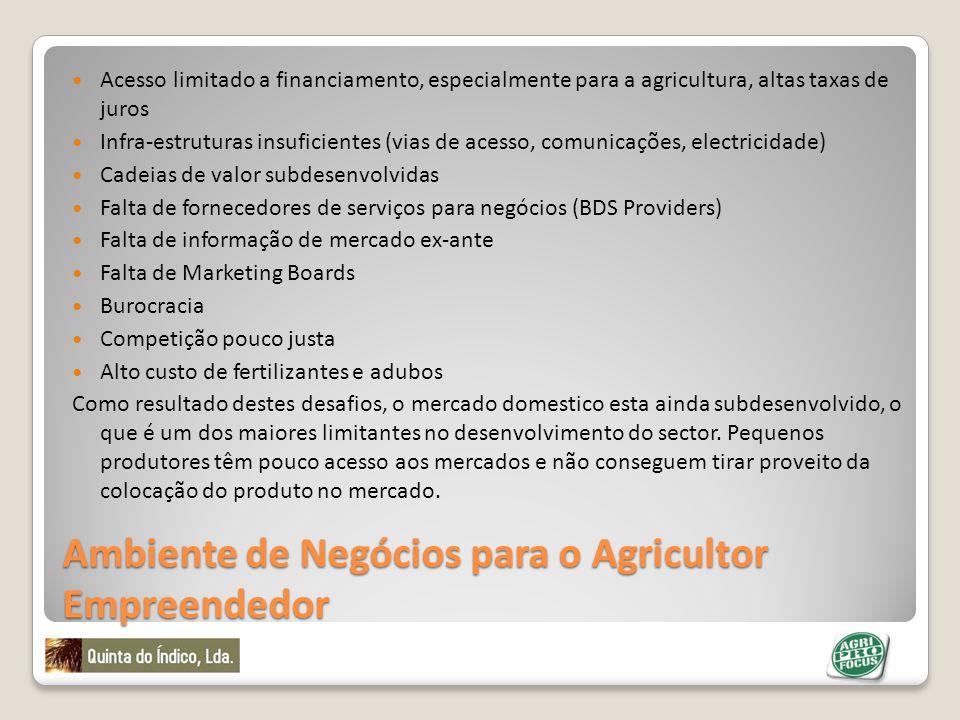 Ambiente de Negócios para o Agricultor Empreendedor Acesso limitado a financiamento, especialmente para a agricultura, altas taxas de juros Infra-estr
