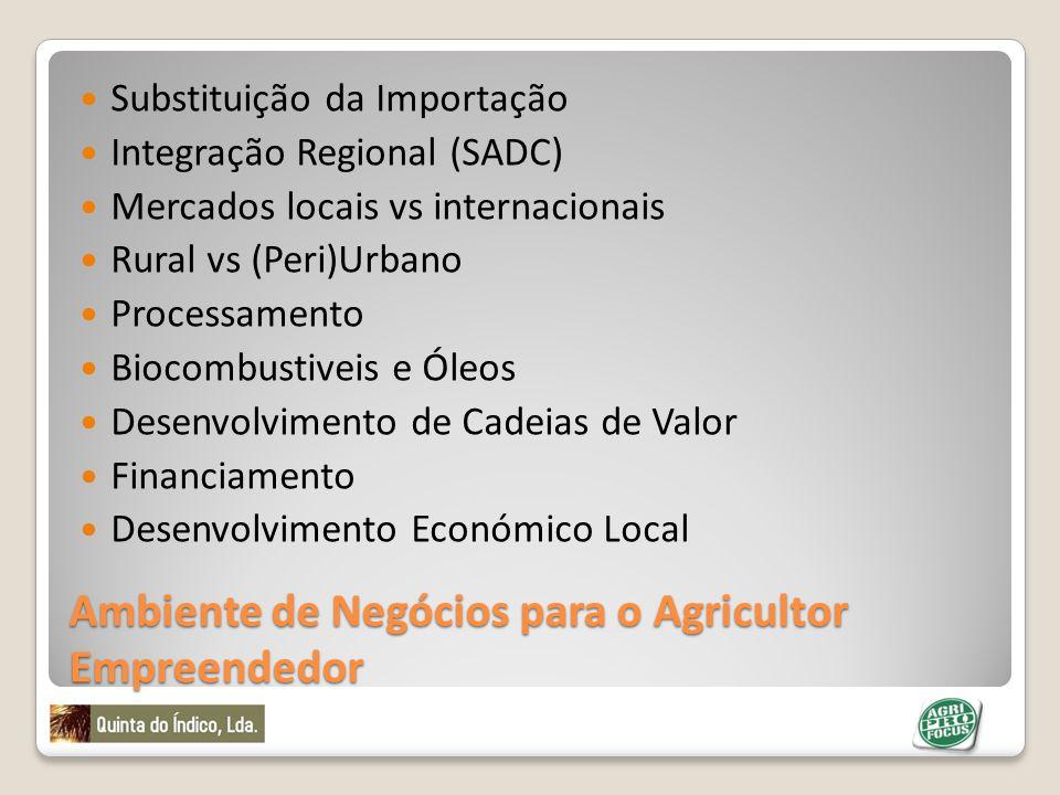 Ambiente de Negócios para o Agricultor Empreendedor Substituição da Importação Integração Regional (SADC) Mercados locais vs internacionais Rural vs (