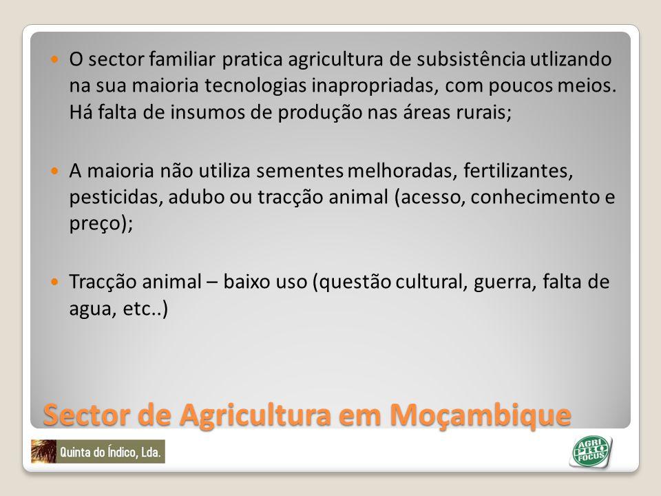 Problemas no Sector de Agricultura em Moçambique Baixa produtividade; Altos riscos climáticos; Baixo investimento; Fracas capacidades de pesquisa, extensão e tecnologias; Alto valor de perdas pos-produção (40%);