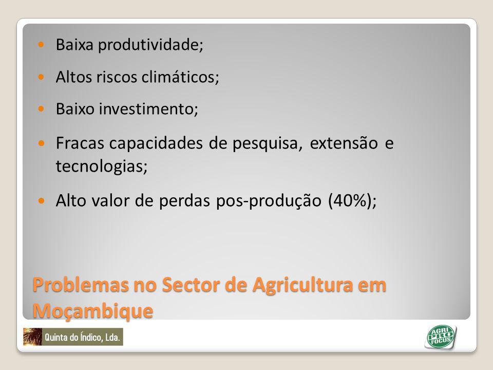 Problemas no Sector de Agricultura em Moçambique Baixa produtividade; Altos riscos climáticos; Baixo investimento; Fracas capacidades de pesquisa, ext