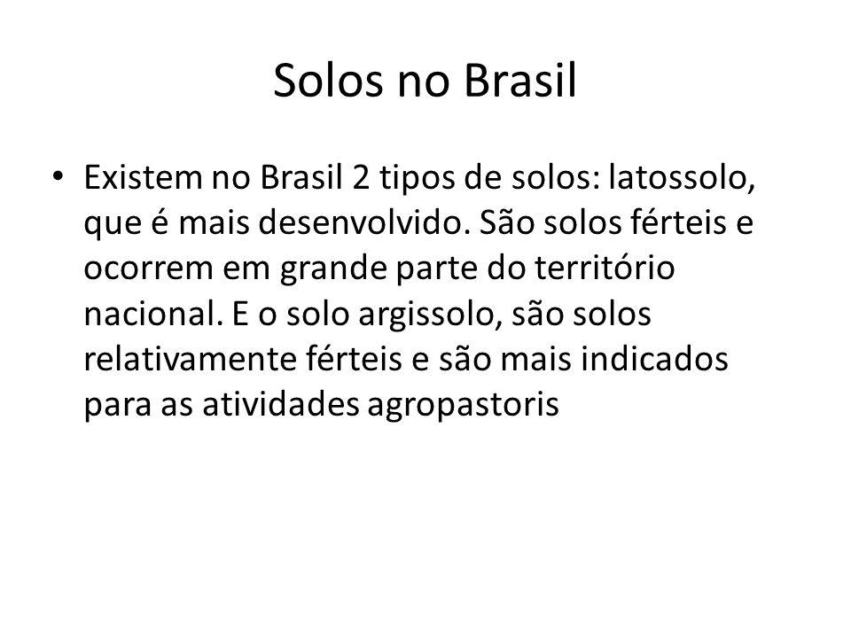 Solos no Brasil Existem no Brasil 2 tipos de solos: latossolo, que é mais desenvolvido. São solos férteis e ocorrem em grande parte do território naci